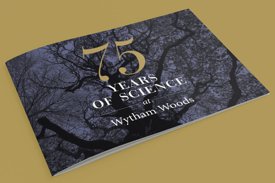 "<div class=""overlay"" style=""background-image: url('/Portals/_default/Skins/HolyWellPress/Thumbnail-Corner-Dots.svg')"">
